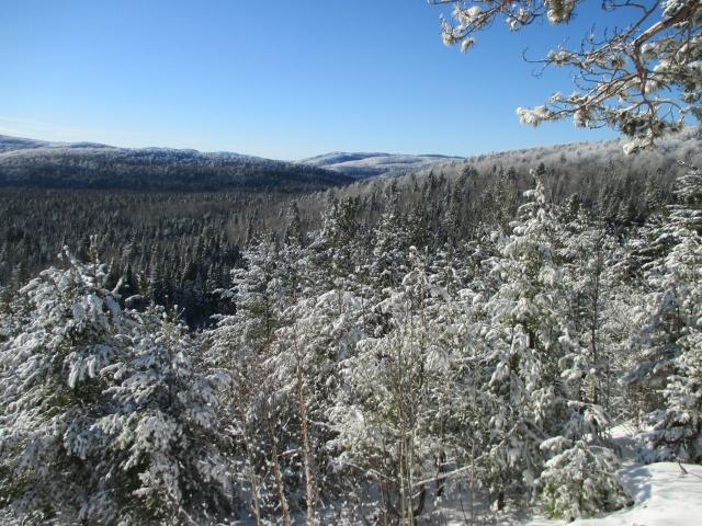 l'hiver est bien installé 776626IMG0312