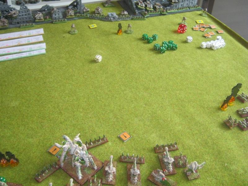 Assaut sur Zebra (campagne narrative) 783877IMG0011