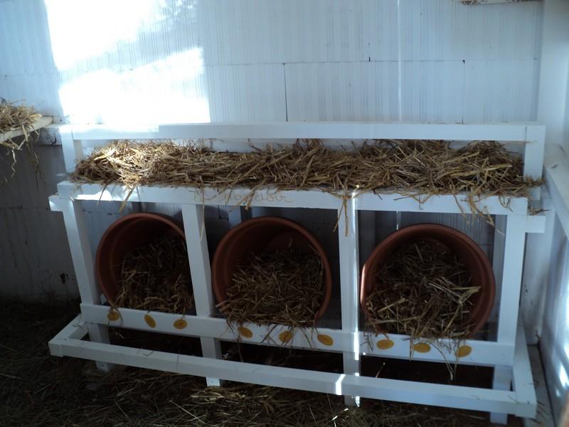 Quelques modèles de pondoirs pour nos poules 797879DSC02580