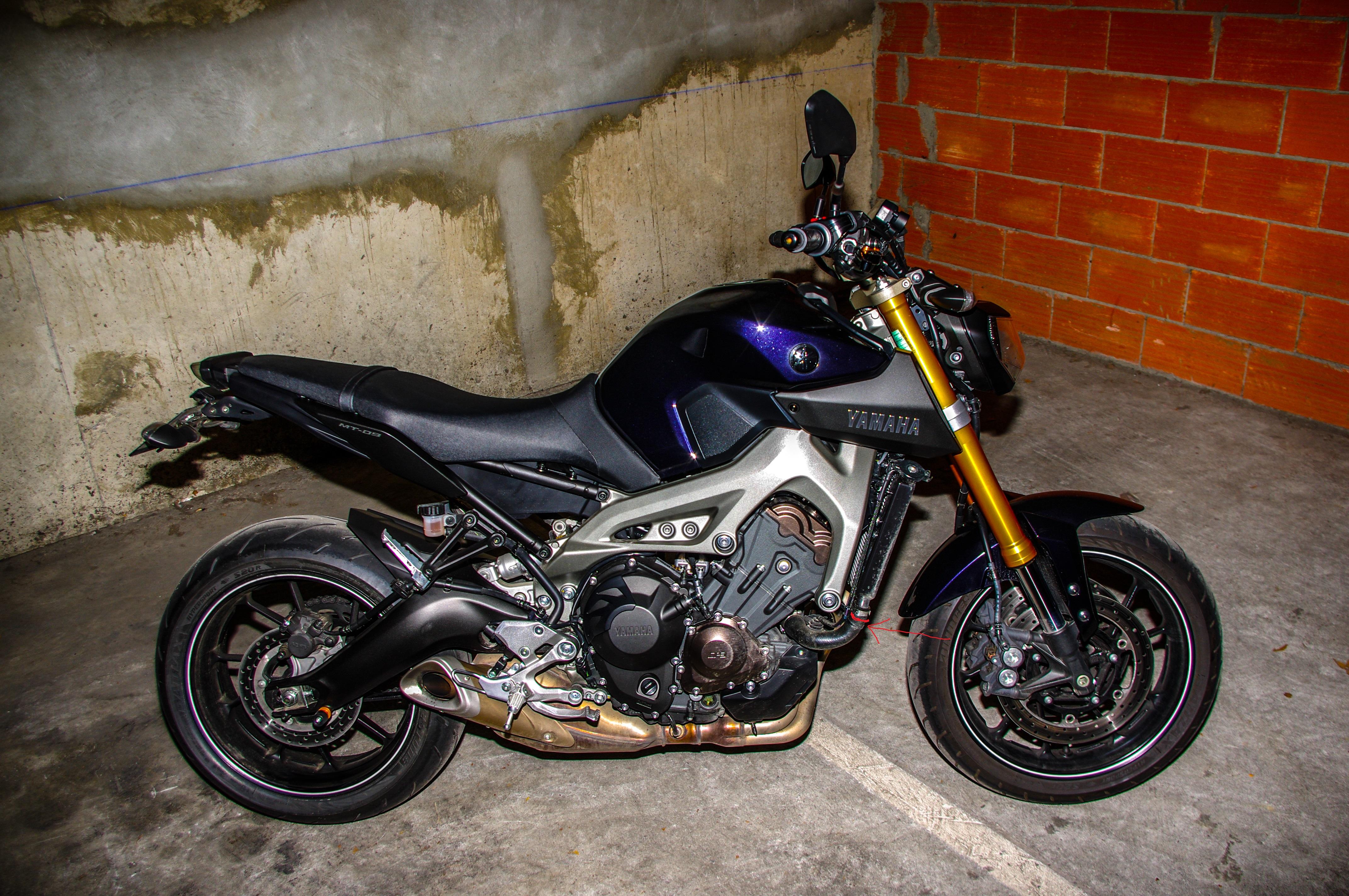 support gopro sur moto 801999gopro