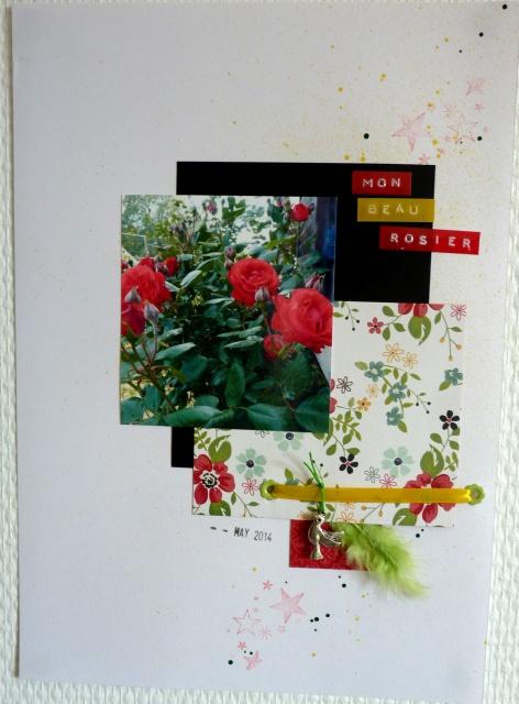 Galerie Papouasie - Equipe sacs jaunes 802253P1100516