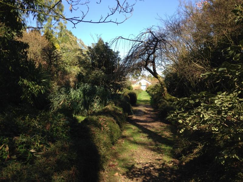 (40) Plantarium et chemin de ronde - Gaujacq 807614IMG0471