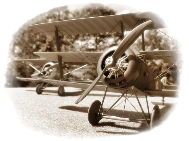 Nieuport 24 Roden 1/32 Modèle terminé. 824263Spia2593