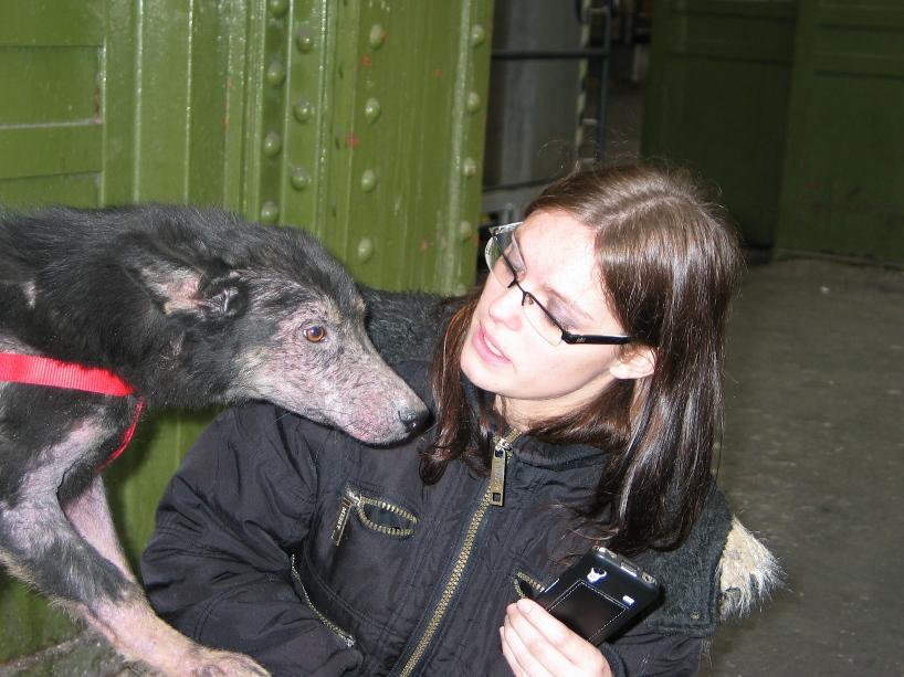 > Mika, un amour de petite chienne, née en mai 2011 - Adoptée 837788745