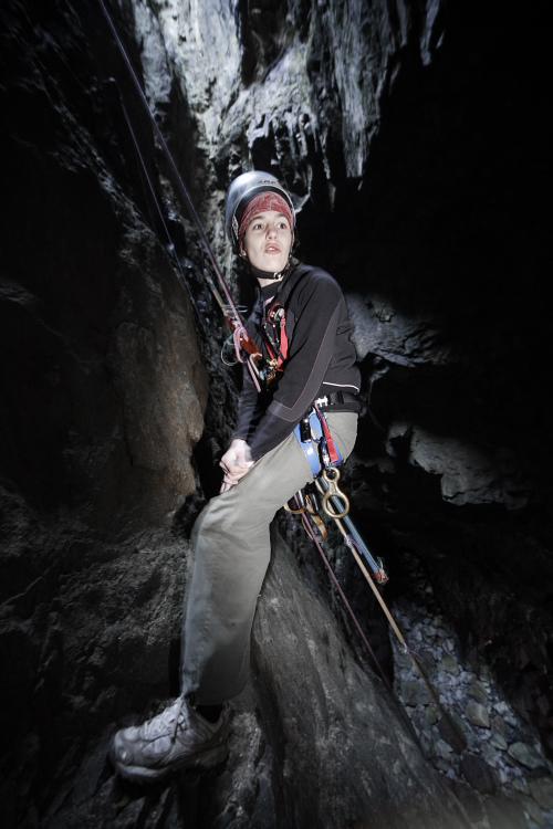 Suivi 2011 du Crave à bec rouge (Pyrrhocorax pyrrhocorax) en Bretagne 83985835K1959