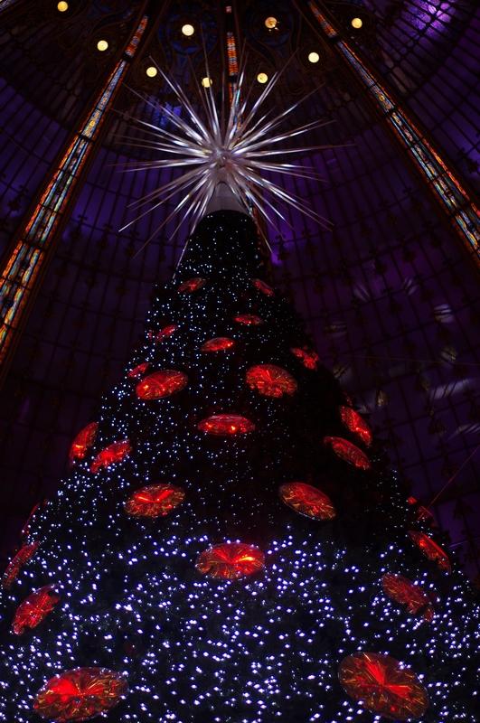 La magie de Noël à Paris 841761IMGP5747x800