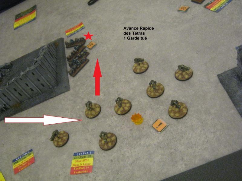 Assaut sur Zebra (campagne narrative) - Page 2 842635IMG0439