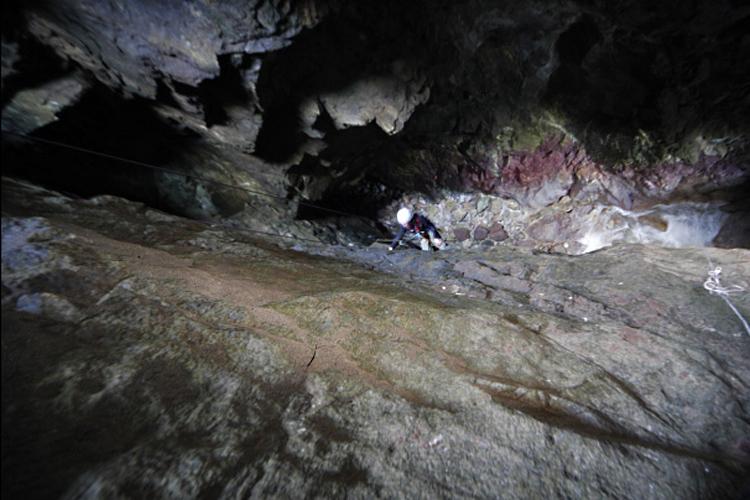 Suivi 2011 du Crave à bec rouge (Pyrrhocorax pyrrhocorax) en Bretagne 86445935K1979