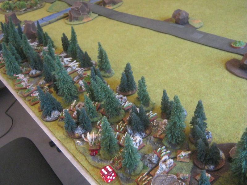 Assaut sur Zebra (campagne narrative) 868253IMG0002