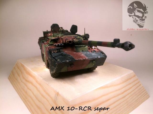 AMX 10 RCR SEPAR maquette Tiger Model 1/35 - Page 2 873162IMG3814