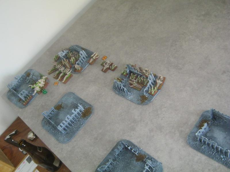 Assaut sur Zebra (campagne narrative) 878248sophia227
