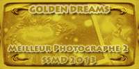 Recherche de BIG_OUF [Myth Cloth - Pandora Box] 880835GDPhotographe2or