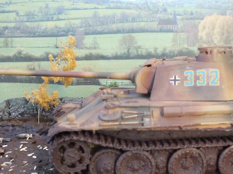 Ardennes Belges ,  mi-septembre 1944... 915967DSCF7280