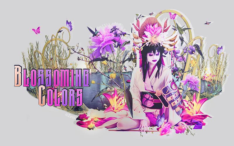 Blossoming Colors • Graphisme et Partage