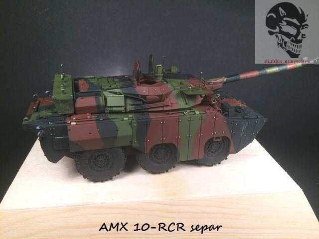 AMX 10 RCR SEPAR maquette Tiger Model 1/35 - Page 2 920542IMG3799