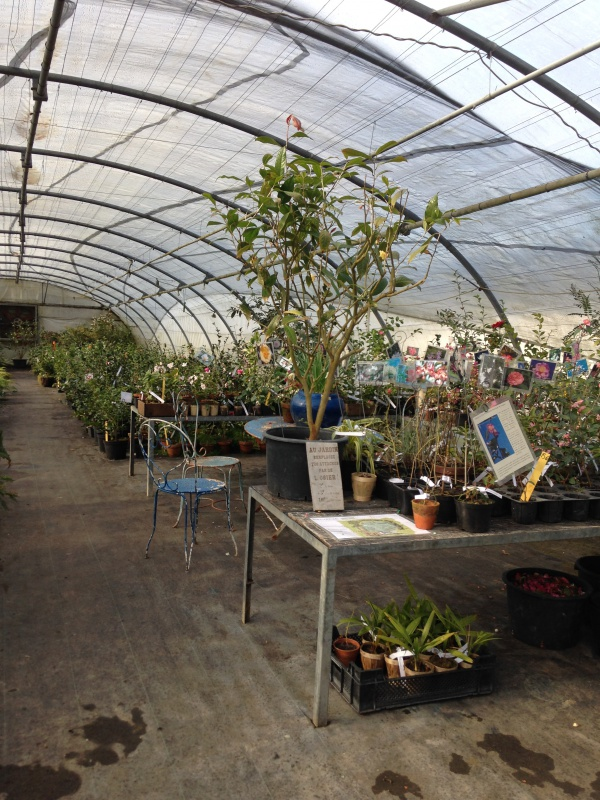 (40) Plantarium et chemin de ronde - Gaujacq 924402IMG0535