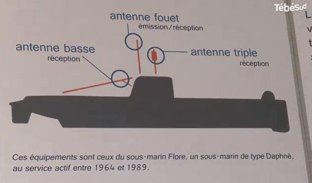 FLORE (SM) - Tome 2 - Page 40 936048TM2FLO2