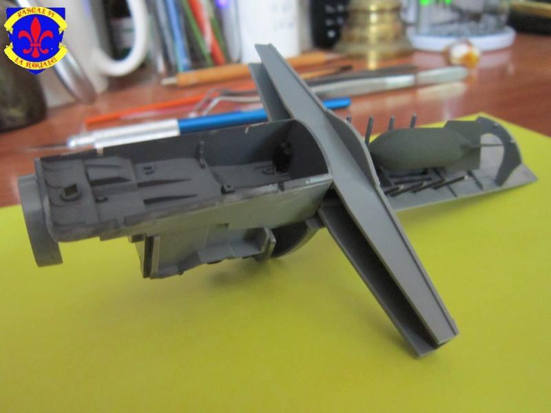 Dornier 335 A PFEIL de Tamiya au 1/48 par Pascal 94 941595IMG36881