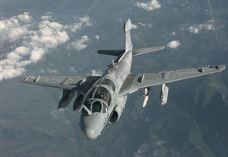 MCDONNELL-DOUGLAS F/A-18 HORNET  958278Grumman_Prowler