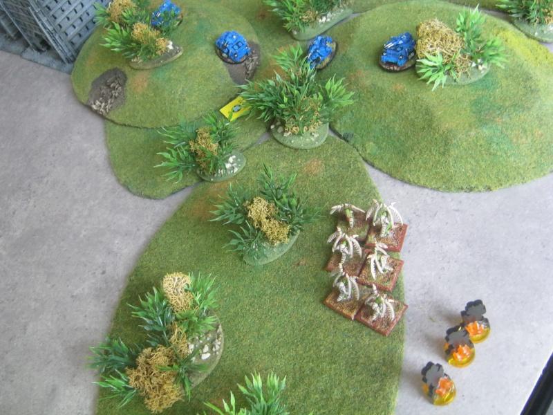 Assaut sur Zebra (campagne narrative) 968388sophia230
