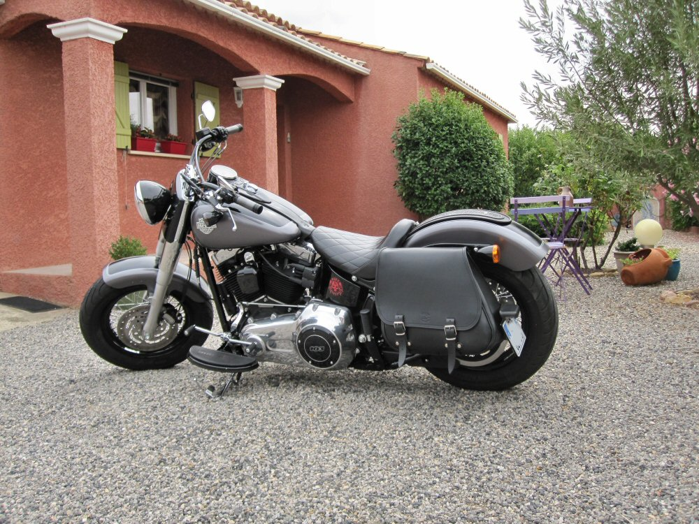 Softail Slim sous tous ses angles ! - Page 10 973204IMG1724