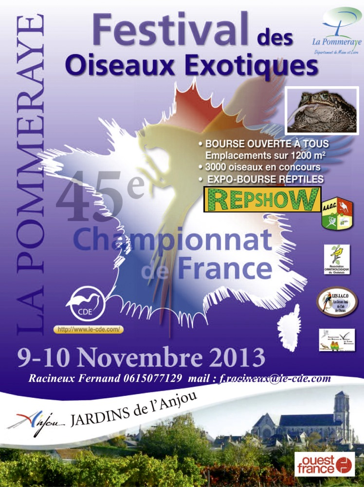 Bourse de la Pommeray 09/10 Novembre 2013 97373011111111