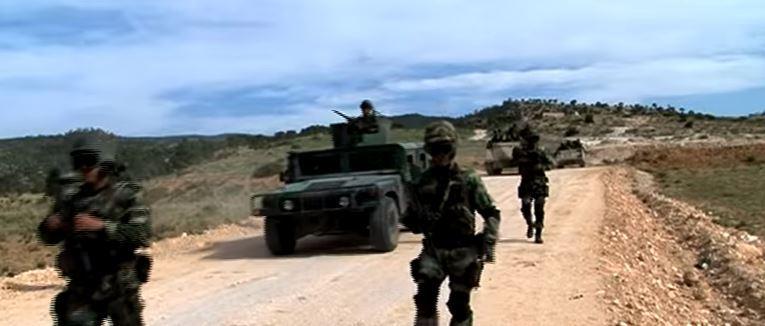 Armée Tunisienne / Tunisian Armed Forces / القوات المسلحة التونسية - Page 11 978423bg