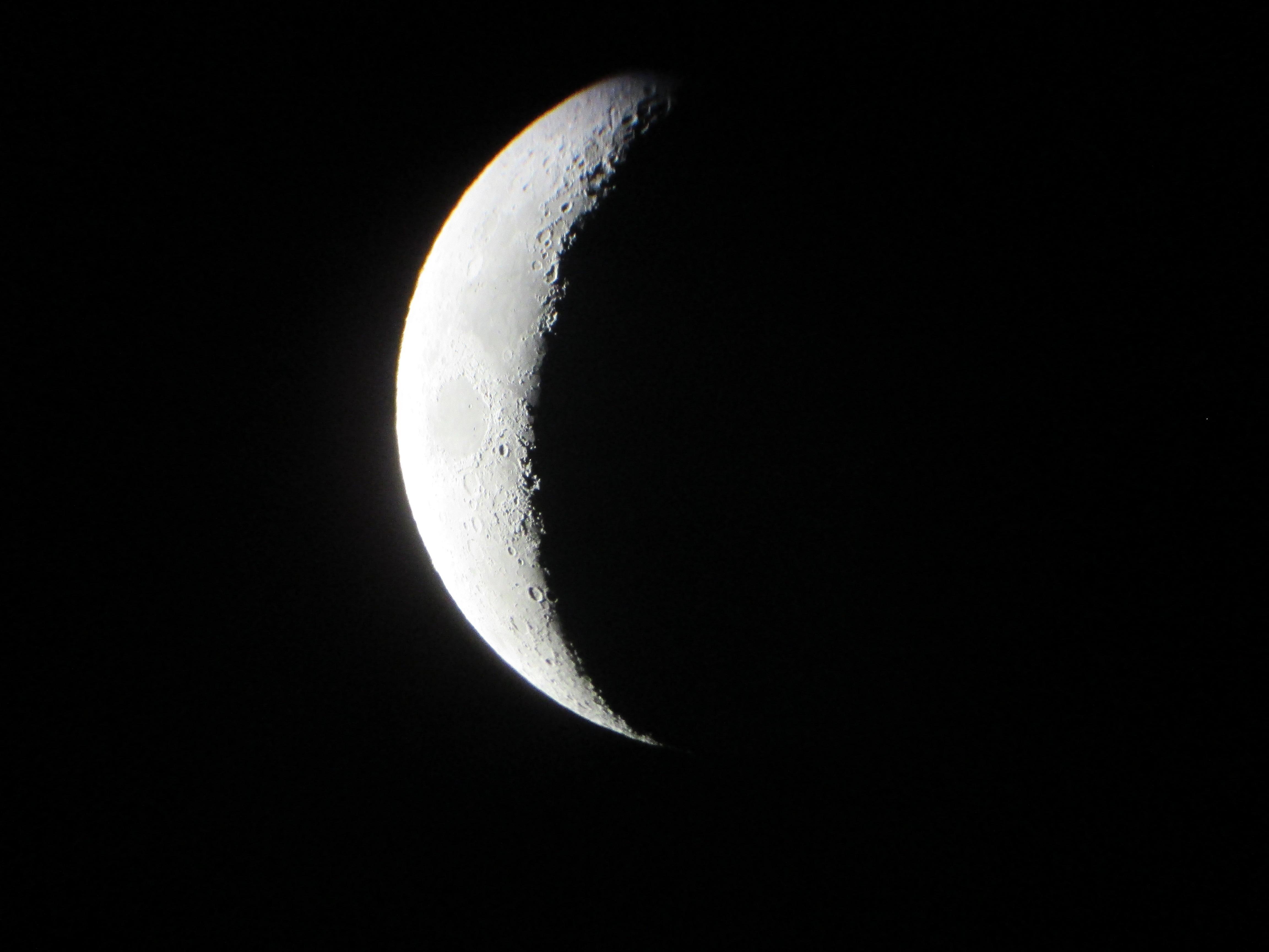 La Lune - Page 32 981801Cartiercomplettzb0103