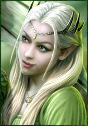 Xiombarg Demi-elfes mage de combat 988872ezyltinjuis