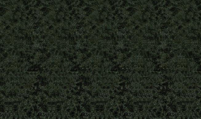 Images en 3D (stéréogrammes) 989887Stfacile05
