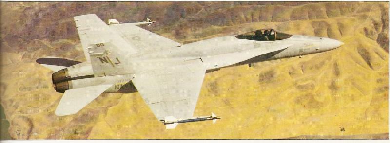 MCDONNELL-DOUGLAS F/A-18 HORNET  993025F_18_preserie