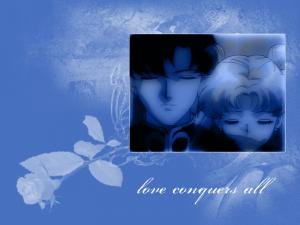 Sailor Moon Mini_206917loveconquers