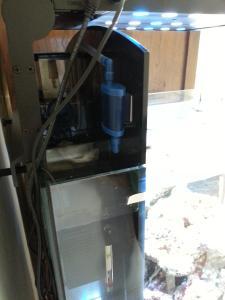 Nouveau bac 80 litres Aquamedic Blenny Advanced Mini_21927620130615103854