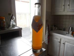Bière au pain Mini_484237N4Panada3