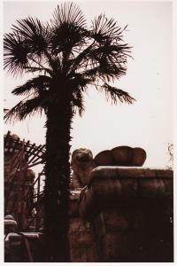 Vos vieilles photos du Resort - Page 15 Mini_497162A89