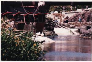Vos vieilles photos du Resort - Page 15 Mini_579835A80