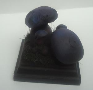 Les réalisations de Pepito (nouveau projet : diorama dans un marécage) Mini_792451Cochongob10