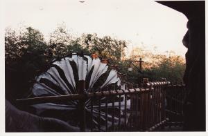 Vos vieilles photos du Resort - Page 15 Mini_798564A12