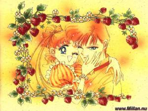 Sailor Moon Mini_839041usagimamoru3800x600