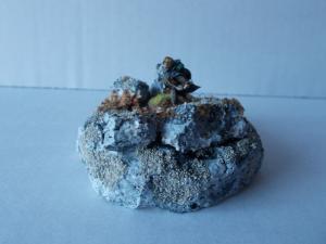 Mes dioramas - Diorama Pirates 06/2020 Mini_842714DSCN1263