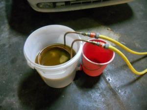 Bière à la châtaigne. Mini_858634N5Castanha16