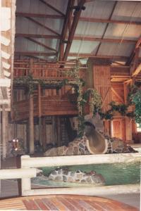 Vos vieilles photos du Resort - Page 15 Mini_896200H41