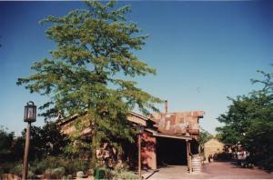 Vos vieilles photos du Resort - Page 15 Mini_943316O161