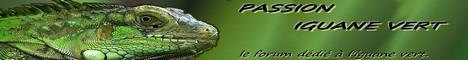 forum sur l'iguane vert et des iles fidji 241752Header