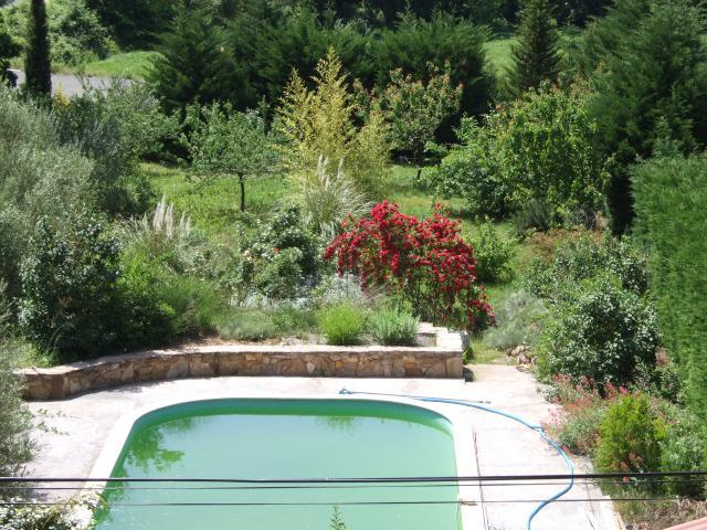 Mon jardin et moi... - Page 2 246558Printemps_2009_087