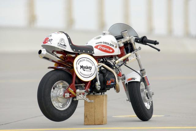 fast-monkey-racer... 330274honda_monkey_record_velocidad_07