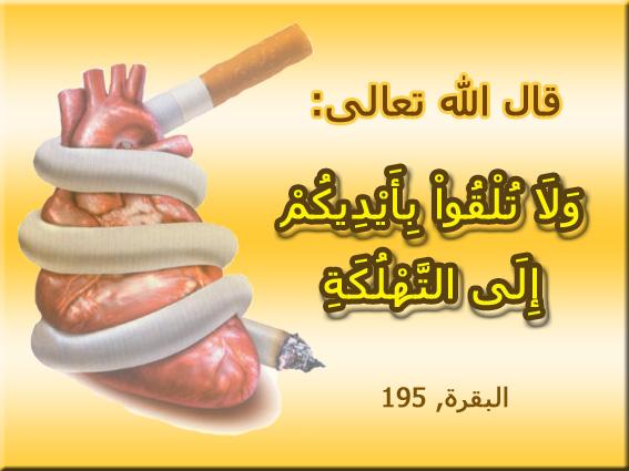 منتدى الاقلاع عن التدخين    forum arrêter de fumer - صفحة 3 375167albaqra195ar