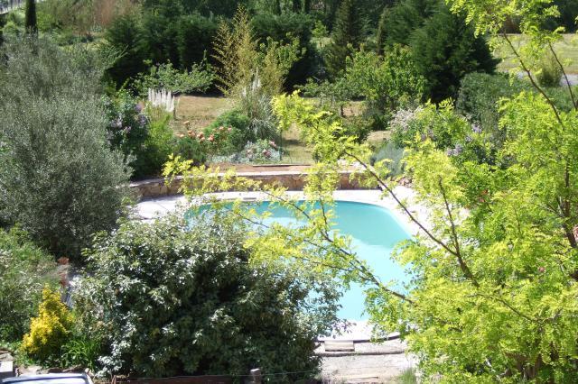 Mon jardin et moi... - Page 2 699326Nouvelles_photos_052