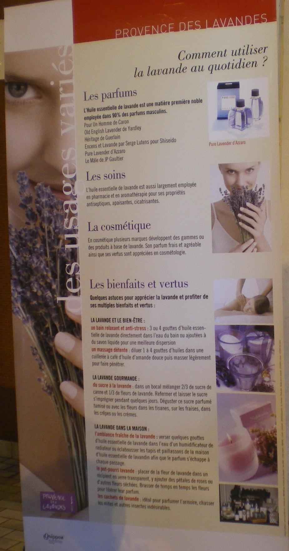 IL ETAIT UNE FOIS ..VALENSOLE - Page 2 736216IMGP5488