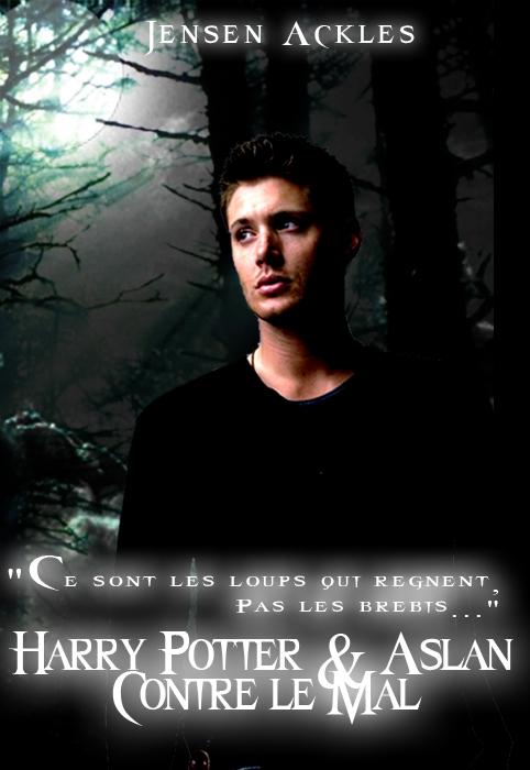 Harry Potter et Aslan contre le mal [Forum de jeu de rôle] /!\avis à ceux qui aime écrire/!\ 747285Affiche_Forum___Dean_Nott